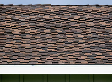Detail of composite shingle pattern